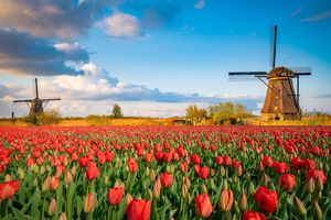 The Netherlands is a particularly popular neighbouring country in Germany and is often regarded as a role model. In the area of nursing care, however, both countries face the same challenges.